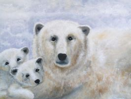 polar bears by dlockett2