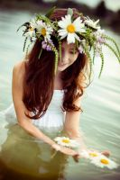 Ivana Kupala 2 by match-boxes