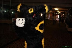 Umbreon with Mr. Tofu Cosplay San by Leap207