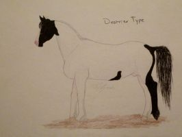 Zantinian Horse Breed: Destrier Type by ObsidianFarm