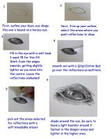 Animal Eye TUTORIAL by carriephlyons