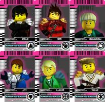 KamenRide card Ninjago by Ask-IchinoHikari