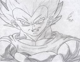 Vegeta Is fly for a white guy by goliad