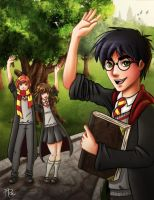Farewell Harry Potter by adrybsk