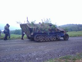 Camo for a half-track by blackmariah27