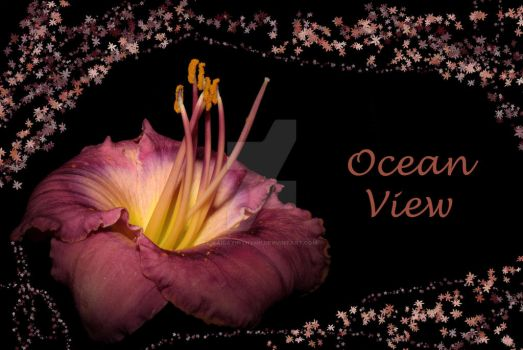 Ocean View by KaidaYinThyme