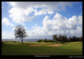 Plantation Golf Course by Krannichfeld