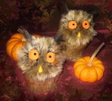 octoberowls by Nenu