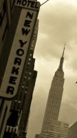 New Yorker III by MatthewForte