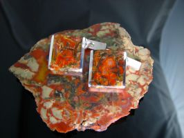 Coprolite Cufflinks by jessa1155