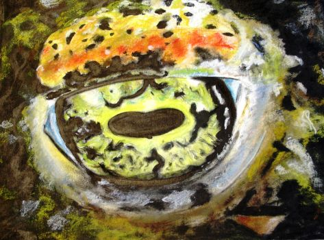 Toad eye by Anneke13