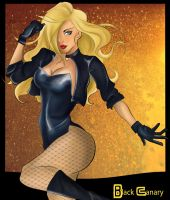 Black Canary by Blackpeppermilk