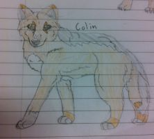 Colin by Re-dez