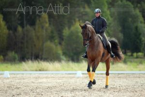 With endurance by attlid
