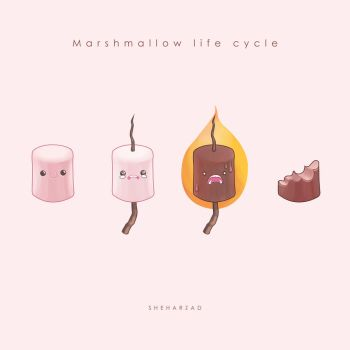 Mashmallow life cycle by Sheharzad-Arshad