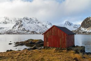 The red shed by DominikaAniola