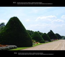 Hampton court 4 by Mithgariel-stock