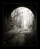 Moonville Tunnel by weeja