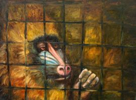 Mandrill by LauraWilde