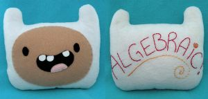 Algebraic, it's Finn the Human by loveandasandwich