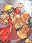 Naruto by M-House