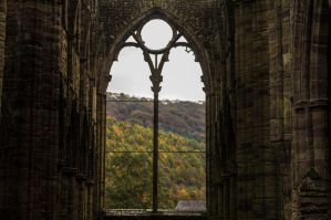 Day 304: Tintern Abbey in Autumn by Kaz-D