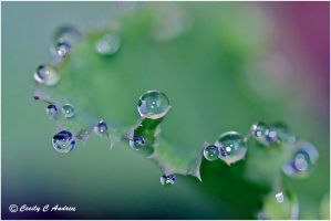 Cosmic Drops by CecilyAndreuArtwork