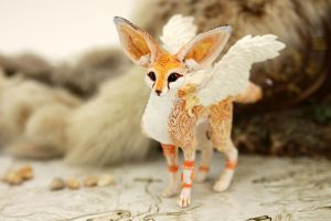 Winged fennec foxy by hontor