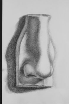Speed Study a plaster nose in Chiaroscuro by DemieLune