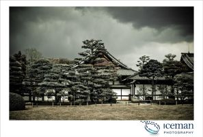 Nijo Castle 05 by IcemanUK