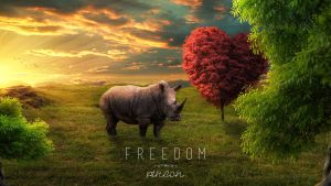 Freedom by Pincons
