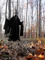 The witch King of Angmar by PhotoNovotna