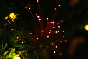 A Fiber Optic Christmas by MoreThanNothing