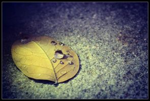 Drop on leaf by xxxNicolettexxx