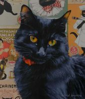 The Black Cat - detail by AstridBruning