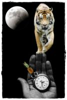 Welcome To A Tiger Moonbeam by melanierogers