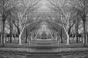 Symmetry by HoangyPongy