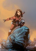 Star Wars: Immolation by JonasScharf