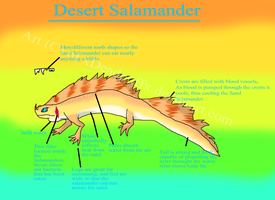 Sand or desert Salamander by xDeadpuffx
