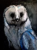 Barn Owl 2 by deathsquirrel69