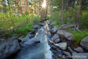 Golden Trout Creek by narmansk8
