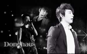 Handsome Donghae by TanyaGreece