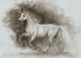 Speed drawing - White unicorn by JulieBales