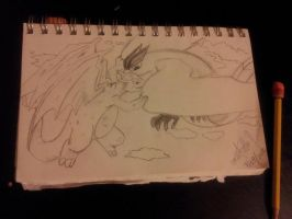 Charizard Vs Articuno by gokufangirl