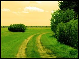Country Road by dewi