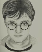Harry Potter by BookWizard