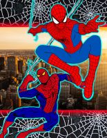 The Amazing Spider-Man Collection by stick-man-11