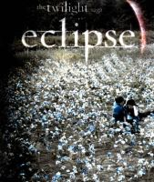 Eclipse Movie Poster by conesound