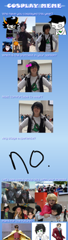 2012 'I don't even cosplay' Cosplay Meme by Selvendor