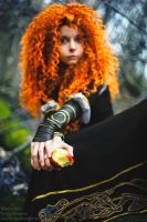 Merida - Princess of highlands by shua-cosplay